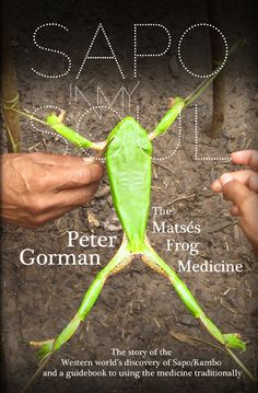 Sapo In My Soul: The Matsés Frog Medicine by [Gorman, Peter] Jungle Jaunt, Sapo Frog, Frog Quotes, World Discovery, Healing Heart, Eye For Detail, Holistic Healing, Natural Healing, Medicinal Plants