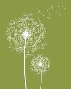 white on olive green dandelion duo wall art