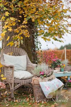 ~Fall picnic!!!I have never go camping or on a picnic.I hope i will go one day.~