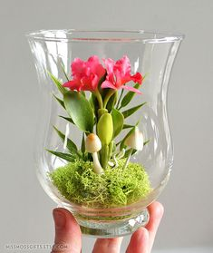 Incredible miniature orchid terrarium ... wow!
