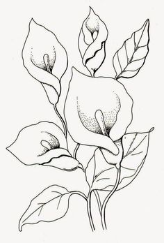 The full-time artist exhibition work-INSIDE Korea JoongAng Daily – World of Flowers Pencil Drawings Of Flowers, Flower Sketches, Art Drawings Sketches, Easy Drawings, Lilies Drawing, Flower Art Drawing, Floral Drawing, Drawing Ideas, Fabric Painting