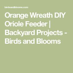 Orange Wreath DIY Oriole Feeder | Backyard Projects - Birds and Blooms