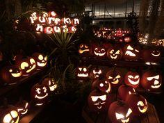 Pumpkin House, Pumpkin Carving, Art, Art Background, Kunst, Pumpkin Carvings, Performing Arts, Art Education Resources, Artworks