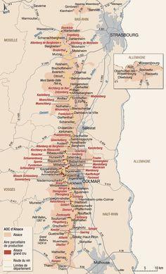 Vins d'alsace : vignoble et appellations - hachette-vins.com