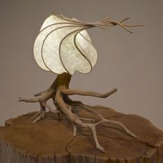 Unique and alive, one-off driftwood lighting and light sculptures. Handmade by Cameron Mathieson in Nelson, BC. Light Art, Paper Light, Mood Light, Luminaire Design, Lamp Design, Wood Sculpture, Sculptures, Sculpture Garden, Sculpture Ideas