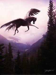 Pegasus - Lonely Like a Highway Mythological Creatures, Fantasy Creatures, Mythical Creatures, Unicorn Horse, Unicorn Art, Unicorn Pictures, Horse Pictures, Dream Fantasy, Fantasy Art