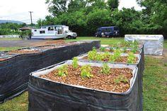Gardening with Aquaponics