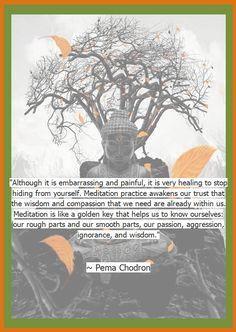 Pema Chodron Foundation #Pema #Chodron