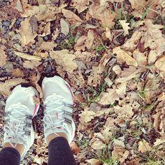 Lovely walk today!☺️ #autumn #Padgram
