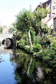 Canals in Bruges | Belgium   Photo taken by me (Nacho Coca)