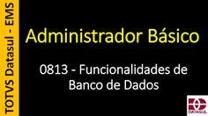 Totvs - Datasul - Treinamento Online (Gratuito): 0813 - EMS - Administrador Básico - Funcionalidade...