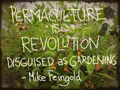 Permaculture is revolution disguised as gardening. - Mike Feingold