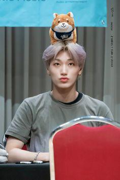 """""""san and his mascots, a devastating thread; Yg Entertainment, Day6 Sungjin, Sans Cute, Kim Hongjoong, Fandom, One Team, Asian Boys, Kpop Boy, Kpop Groups"""