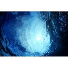 #Australia #queensland #scubatrip #scubadiving #underwater #whatershothousing #watershot #blue #greatbarrierreef by shiyanzhao http://ift.tt/1UokkV2