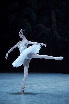 Mathilde Froustey in La Bayadere Ballet Poses, Ballet Dancers, Ballerinas, La Bayadere, Ballet Images, Ballet Performances, Paris Opera Ballet, Dance Art, Dance Pics