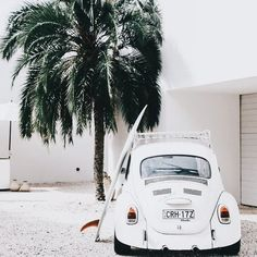 Surfing holidays is a surfing vlog with instructional surf videos, fails and big waves Volkswagen, Vw Bus, Beach Aesthetic, Summer Aesthetic, White Aesthetic, Vw Vintage, Photo Vintage, Kitesurfing, Alana Blanchard
