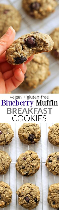 Flourless Vegan Blueberry Muffin Breakfast Cookies...free of butter, oil, ang gluten. These super easy cookies are light, fluffy, and great for breakfast on the go.