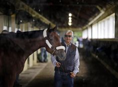 American Pharoah with his trainer Bob Baffert inside the barn at Belmont Park. Will he be the next Triple Crown winner? UPDATE: American Pharoah wins the Triple Crown and becomes the 12th horse in history to achieve it.
