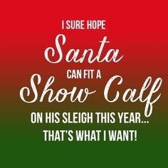 I Sure Hope Santa Can Fit a Show Calf On His Sleigh This Year - Livestock Motivation By Ranch House Designs Livestock Judging, Livestock Farming, Showing Livestock, Cow Quotes, Farm Quotes, Show Cows, Show Steers, Show Cattle, Hobby Farms