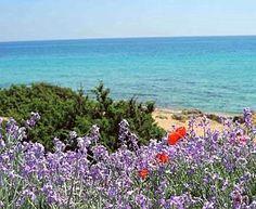 Spiaggia di #Campomarino, #Salento #Puglia