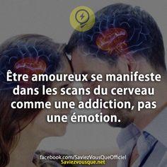 Être amoureux se manifeste dans les scans du cerveau comme une addiction, pas une émotion. | Saviez Vous Que?