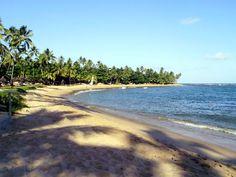 Praia do Forte, Bahia - Brasil
