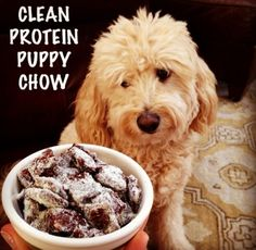 Ripped Recipes - Clean Protein Puppy Chow - Quest Bar coated in a chocolate peanut butter sauce!
