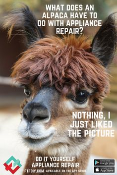 Get ready to diy do it yourself appliance repair face to face do it yourself appliance repair face to face diy pinterest appliance repair household and face solutioingenieria Images