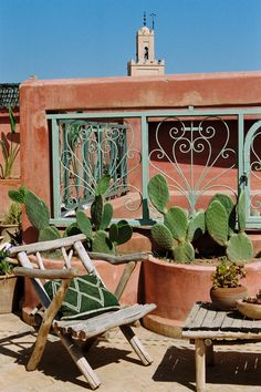 Riad Jardin Secret Marrakech - The Pink Rooftop Cactus Decor, Cactus Plants, Cacti, Location Villa Marrakech, Spanish Style, Wall Collage, Garden Inspiration, Rooftop, Outdoor Spaces