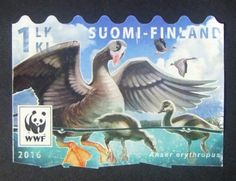 Stamp: Lesser white-fronted goose (Finland) (Endangered Species I) Mi:FI 2454 Decoupage, Sell Stamps, Stamp Catalogue, Endangered Species, Stamp Collecting, Mail Art, Time Travel, Postage Stamps, Birds