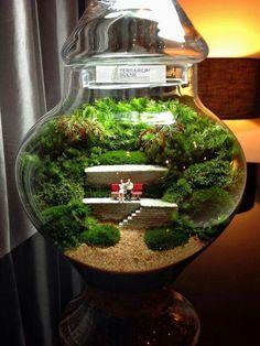 Bonsai Terrarium For Landscaping Miniature Inside The Jars 36