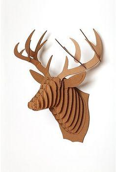 Cardboard Taxidermy