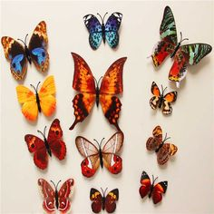 12 piece Magnet Butterflies