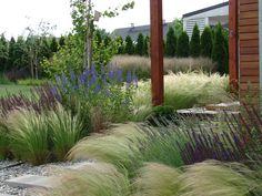 8 Flower Landscape Ideas For Your Garden – Garden Ideas 101 Flower Landscape, Garden Landscape Design, Stipa, Garden Cottage, Ornamental Grasses, Back Gardens, Winter Garden, Garden Styles, Dream Garden