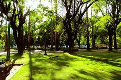 Praça da Liberdade - Belo Horizonte - Minas Gerais