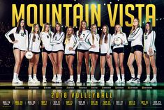 Matt Daniels Photography, specializing in high school sports, senior photos and portraits. Volleyball Shirt Designs, Volleyball Shirts, Basketball Posters, Basketball Teams, Volleyball Team Pictures, Team Photography, Photography Ideas, Sibling Photos, Sports Graphic Design