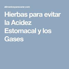 Hierbas para evitar la Acidez Estomacal y los Gases