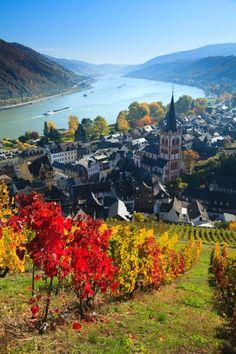 Bacharach on the Rhine - Rhineland-Palatinate - Germany by Bartek Rozanski