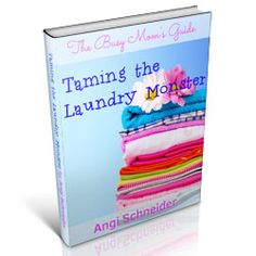 Want to revolutionize your laundry routine? Check out how I revolutionized my laundry routine!