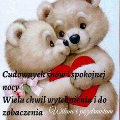 Good Night All, Teddy Bear, Humor, Animals, Owl, Animales, Animaux, Humour, Owls