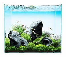 Aquasketch: Iwagumi by StevenChong-no-GMF Aquarium Design, Plant Growth, Rock Formations, Types Of Plants, Live Plants, Fish Tank, Art Forms, Mists, Cube
