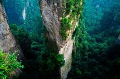 Zhangjiajie National Forest Park, China <> Just start planning your vacation to the park that inspired the scenery in Avatar. Zhangjiajie, Parc National, National Forest, National Parks, Tianzi Mountains, Ipad Air Wallpaper, Forest Scenery, Image Film, Mysterious Places