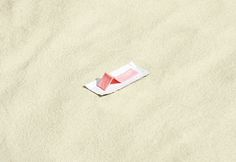Gum on the Beach by