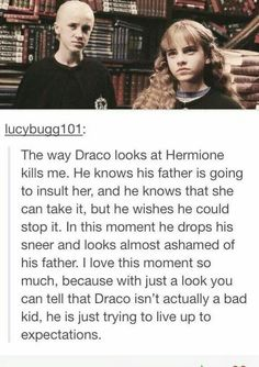 Plus I'm pretty sure the sorting hat made a mistake. Hermione should have been sorted to Slytherin. I mean, everything about her is dedication and greatness!