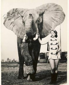 Circus Performer with elephant. please stop the abuse of circus animals by boycotting current circuses that use animals in their acts Vintage Circus Photos, Vintage Pictures, Old Pictures, Vintage Images, Old Photos, Vintage Circus Performers, Old Circus, Circus Art, Night Circus