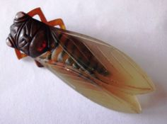 1920s ART DECO PHENOLIC CELLULOID LARGE FLY BUG/CICADA  BROOCH PIN