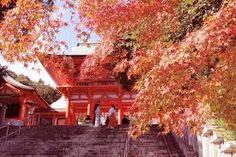 「近江神宮」の画像検索結果