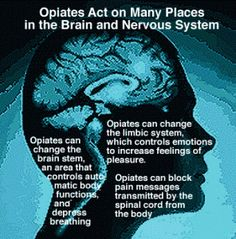 Convincing an Opiate Addict to get Opiate Addiction Treatment