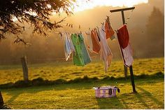 I have a thing for clotheslines. Weird, I know.