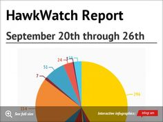 HawkWatch Report September 20th through 26th. #HNCHawkWatch #HitchcockNatureCenter #LoessHills